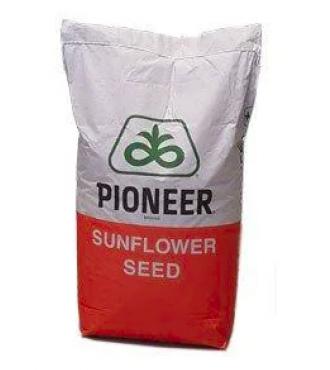 Семена подсолнечника P64HH106 (П64НН106)