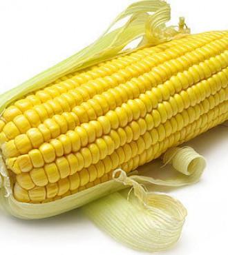 Семена кукурузы ДКС 3759