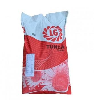 Насіння соняшнику Тунка