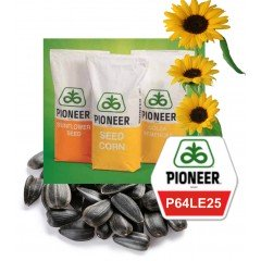 Насіння соняшнику Піонер P64LE25