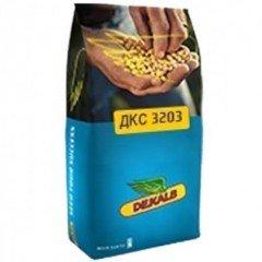 Насіння кукурудзи ДКС 3203