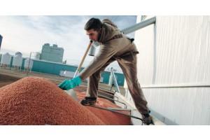 Для чого потрібні протруйники насіння