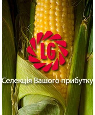 Насіння кукурудзи Limagrain