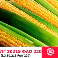 Насіння кукурудзи ЛГ 30215