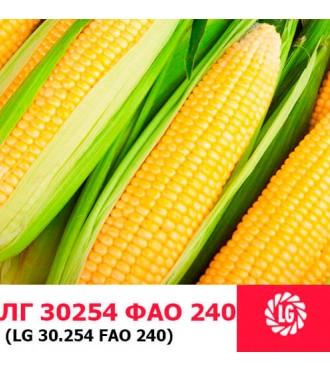 Насіння кукурудзи ЛГ 30254