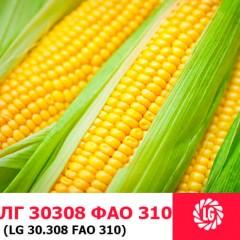 Насіння кукурудзи ЛГ 30308
