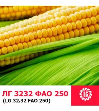 Семена кукурузы ЛГ 3232