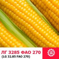 Насіння кукурудзи ЛГ 3285