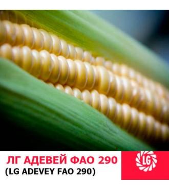 Семена кукурузы ЛГ Адевей (Adevey)