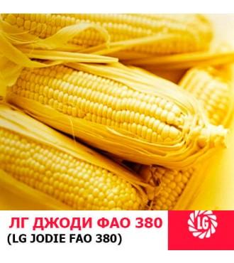 Семена кукурузы ЛГ Джоди (Jodie)
