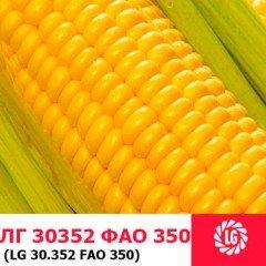 Семена кукурузы ЛГ 30352