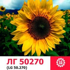Насіння соняшнику ЛГ 50270