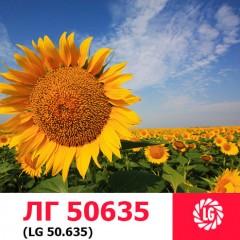 Семена подсолнечника ЛГ 50635