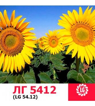 Семена подсолнечника ЛГ 5412