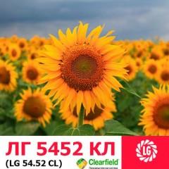 Семена подсолнечника ЛГ 5452