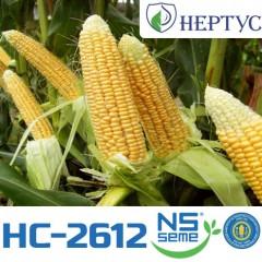 Насіння Кукурудзи НС-2612