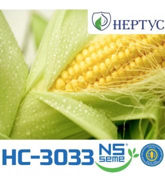 Семена Кукурузы НС-3033