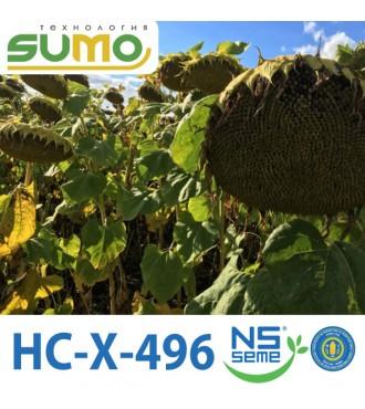 Насіння Соняшнику HC-X-496 Еліт