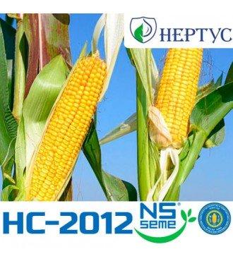 Семена Кукурузы НС-2012