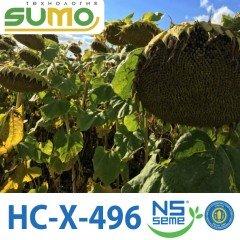 Семена Подсолнечника HC-X-496 Элит