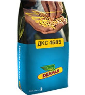 Насіння кукурудзи Монсанто ДКС4685