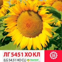 Семена подсолнечника ЛГ 5451