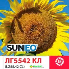 Насіння соняшнику LG 5542