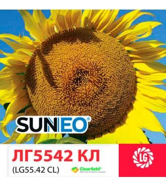 Семена подсолнечника LG 5542