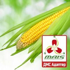 Семена кукурузы ДМС Адаптер МАИС
