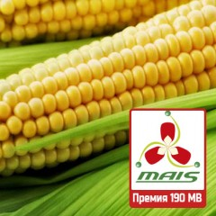 Насіння кукурудзи Премія 190 МВ МАЇС