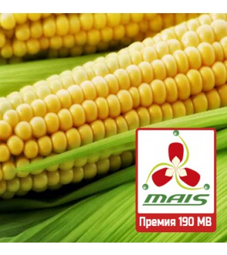 Семена кукурузы Премия 190 МВ МАИС