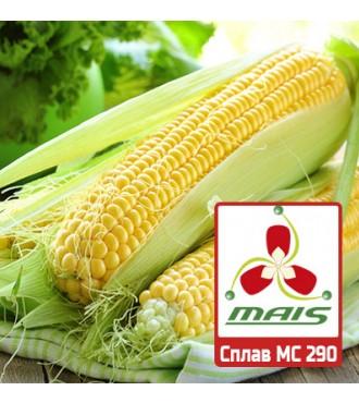 Семена кукурузы Сплав МС 290 МАИС