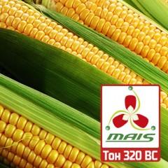 Насіння кукурудзи Тон 320 ВС МАЇС