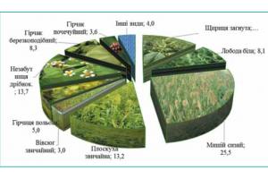 Факторы , влияющие на эффективность почвенных гербицидов