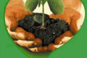 Как  использовать  Раундап Макс, украинский рынок гербицидов