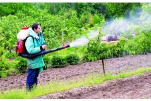 Интересные факты о средствах для защиты растений