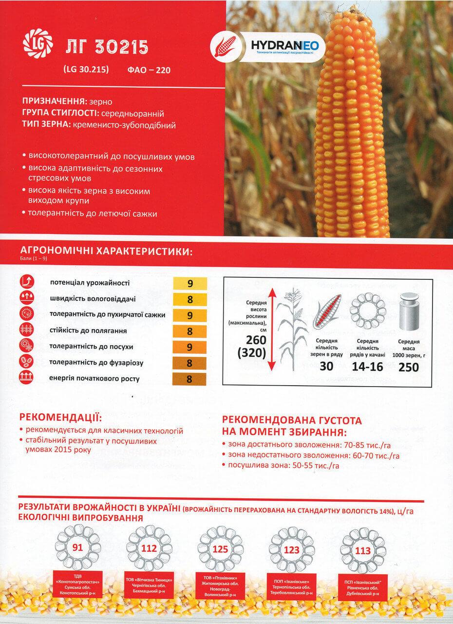 Купить Семена кукурузы ЛГ 30215
