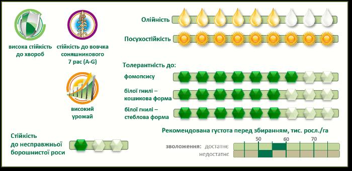 Насіння соняшнику Піонер PR64F66 купити в Україні