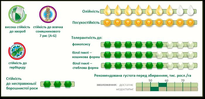 Купить Семена подсолнечника П64ЛЦ108 (P64LC108)