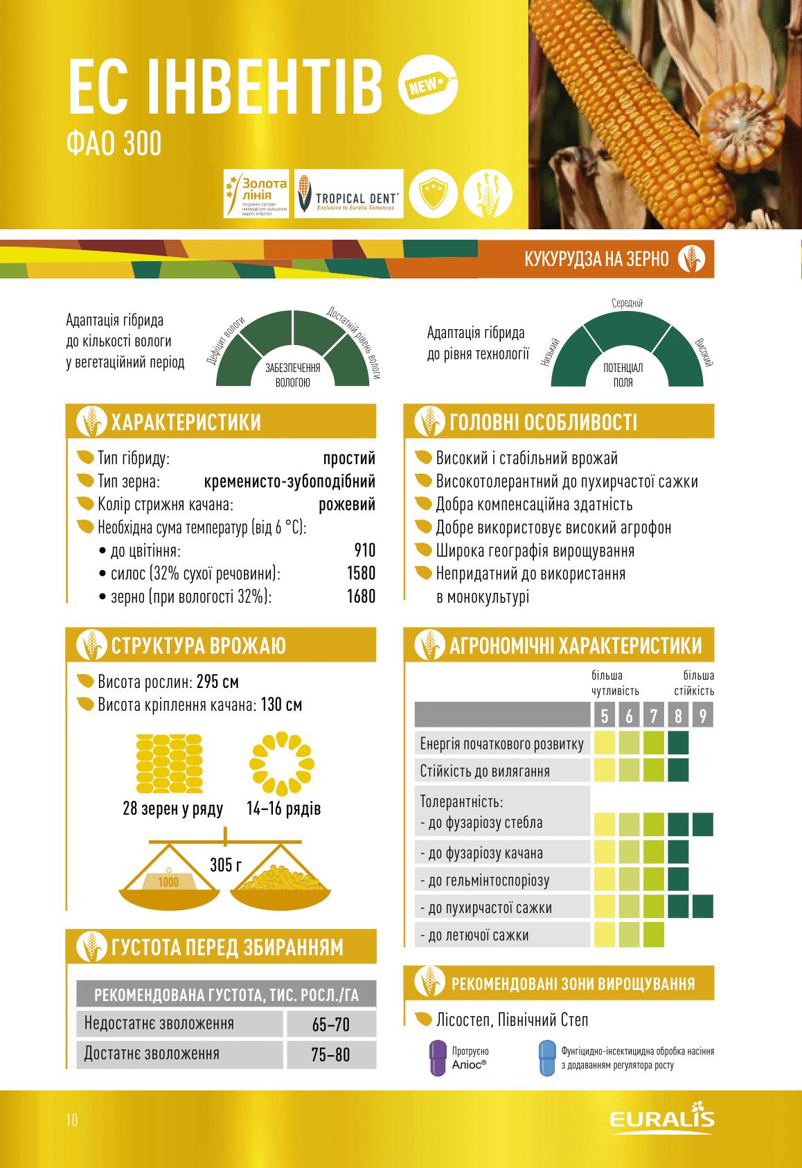 Купити Насіння кукурудзи Інвентів
