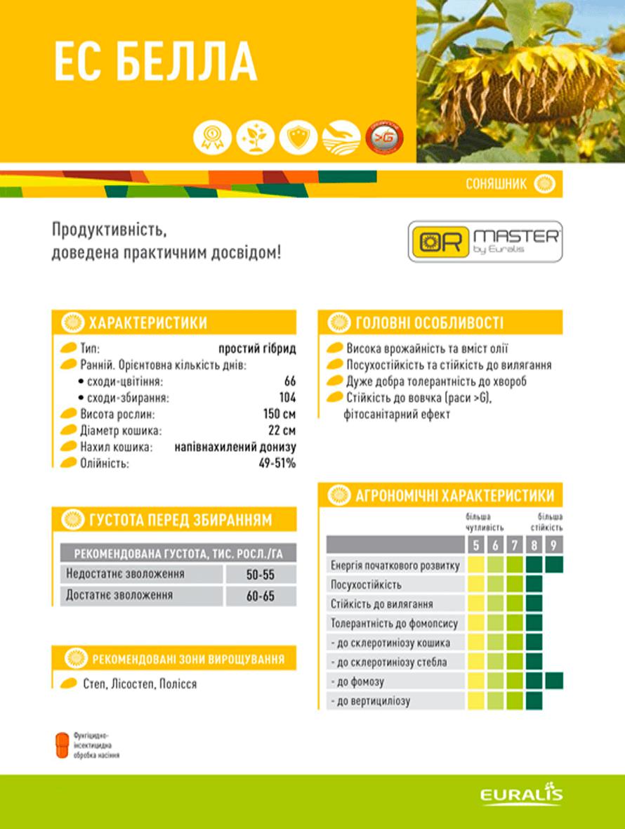 Купить семена подсолнечника ЕС Белла
