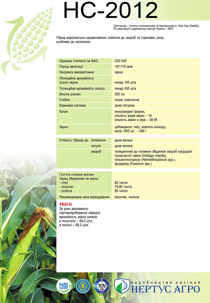 Купить подсолнух НС-2012
