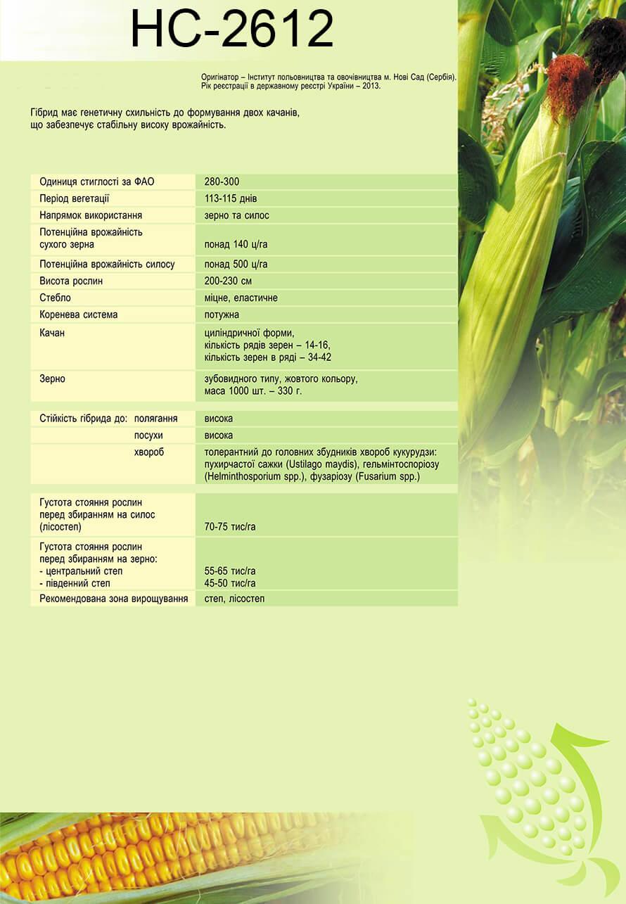 Купить подсолнух НС 2612