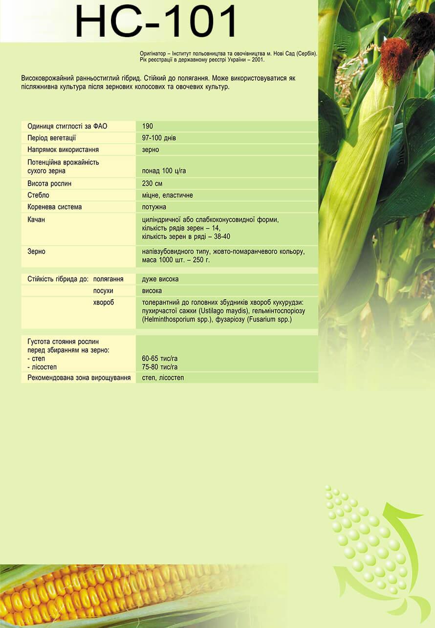 Насіння Кукурудзи НС-101