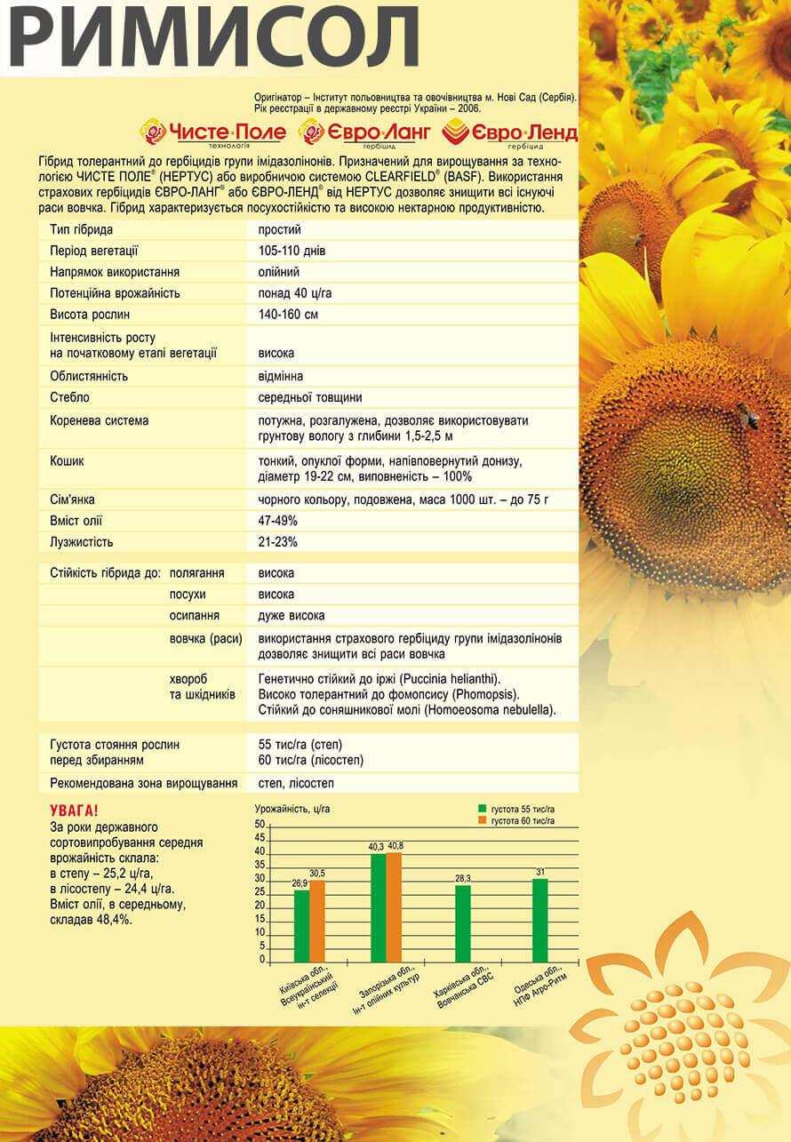 Купити насіння соняшнику Рімісол Еліт