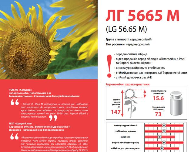 купити Насіння соняшнику ЛГ 5665