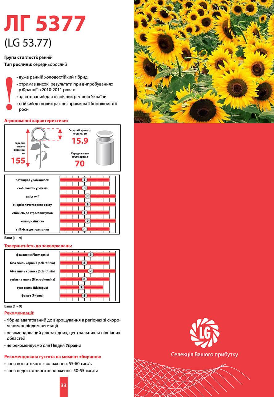 Купить Семена подсолнечника ЛГ 5377