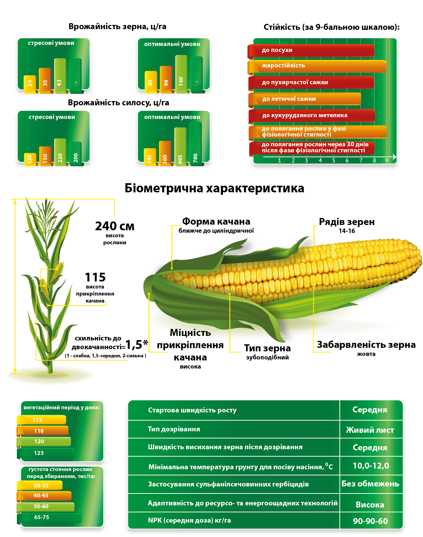 Семена кукурузы ДМС Адаптер МАИС купить