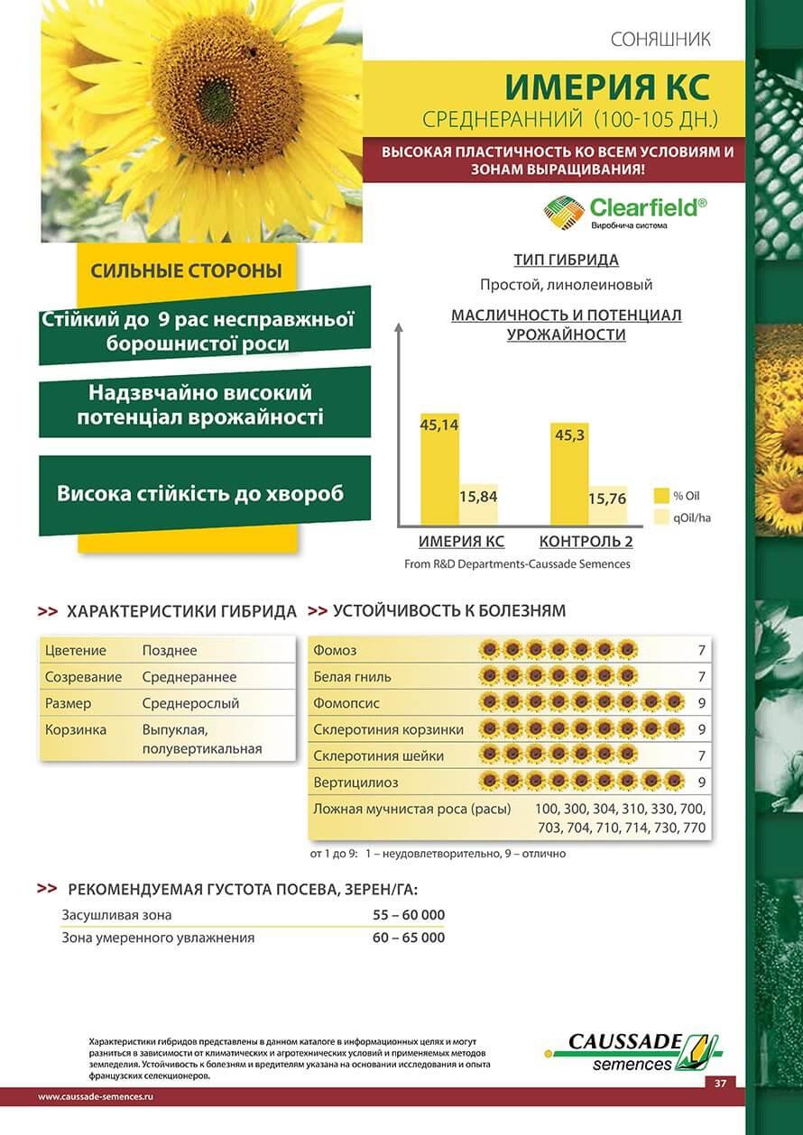 Семена подсолнечника Имерия КС - СРЕДНЕСПЕЛЫЙ (106-110 ДН.)